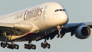Download 20 HEAVY LANDINGS in 10 minutes - AIRBUS 380, BOEING 787 ... Video