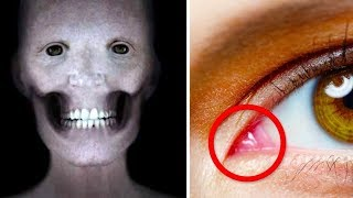 Download 17 Jaw-Dropping Facts You Didn't Know About the Human Body Video