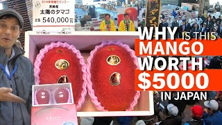 Download $5,000 Mango at Auction ー but WHY? ★ ONLY in JAPAN Video