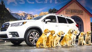 Download Subaru Ascent Live World Premiere All New 2018 + Subaru Dogs Commercial The Barkleys CARJAM TV Video