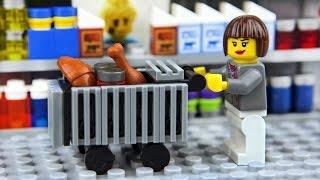 Download Lego Shopping Fail 2 Video