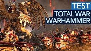 Download Total War: Warhammer - Test-Video: Gelingt die Total-War-Revolution? Video