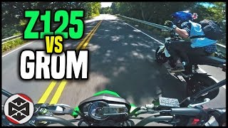 Download HE BEAT ME | First Ride - Kawasaki Z125 vs Grom Video