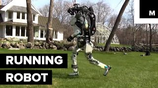 Download Watch Boston Dynamics' Atlas Go for a Run in the Woods Video