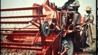 Download Laverda: le macchine da raccolta del 1956 Video
