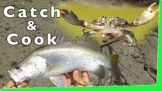 Download Catch n Cook 🔥 Mud Crabs 🦀 with Barramundi Fishing EP.345 Video