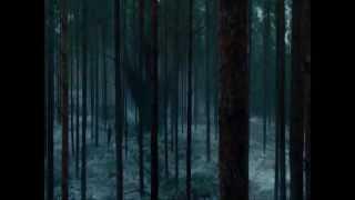 Download Sherlock Holmes: Juego de sombras - Escena bosque Video