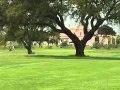 Download Mundo Golfe # 11 - 08.05.2010 Video