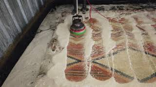 Download Urine removal from beautiful wool area rug Video