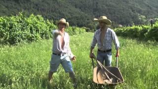 Download PERDERE L'AMORE - PARODIA ″PERDERE IL TRATTORE″ ALBERTO DIMENSIONE MUSICA Video