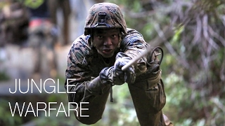 Download Infantry Marines – Jungle Endurance Course Video