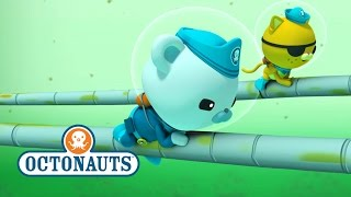 Download Octonauts: Exciting Octopod Chase Video