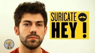 Download SURICATE - Hey ! Video
