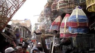 Download بازار کاح فروشی کابل Video