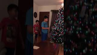 Download Daniel and Dylan reaction to their Christmas surprise puppy surprise Video