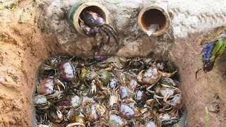 Download Amazing Smart Boy Deep Bamboo Hole Catch A Lot Of Crabs In Cambodia Video