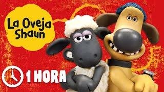 Download Español Capitulos Completos - La Oveja Shaun (Temporada 1) Video