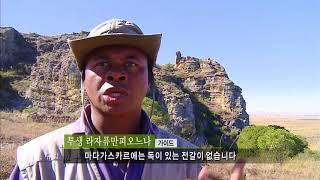Download [EBS 세계테마기행] 아프리카의 소행성 마다가스카르 1~4부 Video