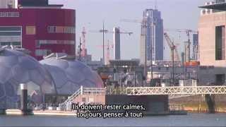 Download Immigration aux Pays-Bas Video