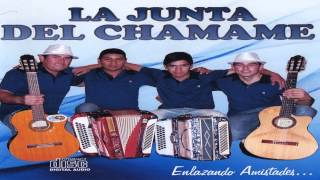 Download LO NUEVO DE LA JUNTA DEL CHAMAME 2014 ″QUISIERA SER″ Video