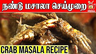 Download KING of CRAB Gravy | NANDU KULAMBU | Kattiyakkaran | crab village food Video