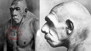 Download अगर आप हनुमानजी को नही मानते तो ये विडियो मत देखिये ! Hidden Fact Of Lord Hanuman ! Video