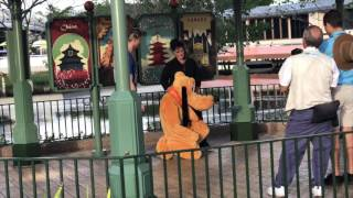 Download Woman Brings Monkey to Meet Pluto at Walt Disney World Video