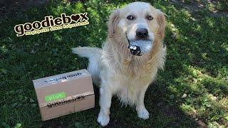 Download Szeptemberi Goodiebox Unboxing | Mogyi és Ehssty Video