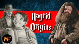 Download Rubeus Hagrid Origins Explained Video