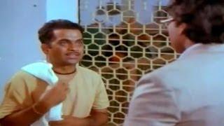 Download Swayamkrushi Movie || Chiranjeevi Scolding Brahmanandam Scene || Chiranjeevi , Vijayashanti Video