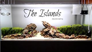 Download Aquascaping THE ISLANDS Video