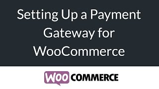 Download Payment Gateways for WoCommerce (PayPal, Stripe) - eCommerce Beginners Series Video