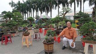 Download Những tác phẩm bonsai đẹp nhất tại hội chợ làng nghề Từ Liêm, Hà Nội Video