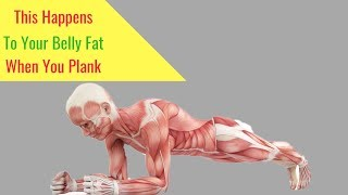 Download This Happens to Your Stomach Fat When You Plank - 6 Good Reasons Why You Should Do Plank Daily Video