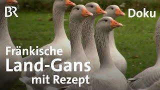 Download Fränkische Land-Gans: Gerettetes Gefügel | Zwischen Spessart und Karwendel | Gänsebraten Video