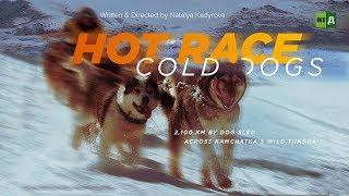 Download Hot Race, Cold Dogs: 2,100 km by dog sled across Kamchatka's wild tundra Video