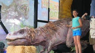 Download TREX videos - Dallas Zoo Dinos Pt3 Video