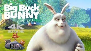 Download การ์ตูน  แอนิเมชั่น Big Buck Bunny Video