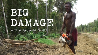 Download BIG DAMAGE - Illegal Logging in Papua New Guinea (FULL FILM) Video