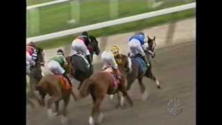 Download 2004 Belmont Stakes - Birdstone + Post Race Video