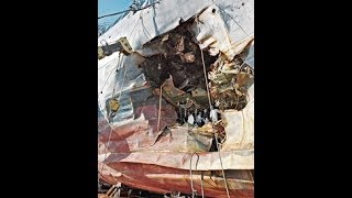 Download !MORE *NEW* NAVY LIES! INEXPLICABLE STORY FALLING APART! Video