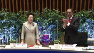 Download UNAIDS presents the First Lady of China with Award for Outstanding Achievement Video