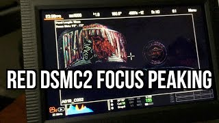 Download How To Use Focus Peaking On Your RED DSMC2 Camera & Monitor! Raven, Scarlet-W, Epic-W, & Weapon Video