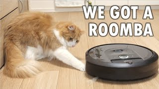 Download So we got a Roomba Video