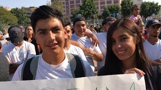 Download The Beautiful People of DACA Video