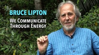 Download Bruce Lipton: We Communicate Through Energy Video