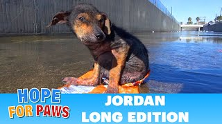 Download Jordan's Journey - The extended version. Video