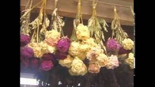 Download Florist Dried Flowers Video