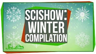 Download SciShow: Winter Compilation Video