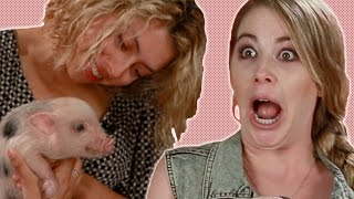 Download Bacon Lovers Meet Baby Pigs Video